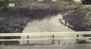 Wilkins Slough Canal